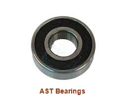 AST AST50 80IB40 plain bearings