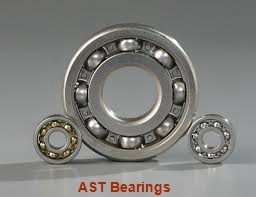 AST AST650 F759060 plain bearings