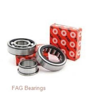 160 mm x 270 mm x 109 mm  160 mm x 270 mm x 109 mm  FAG 24132-E1-2VSR-H40 spherical roller bearings