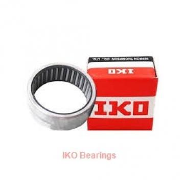 IKO SNPT 1/4-20 plain bearings