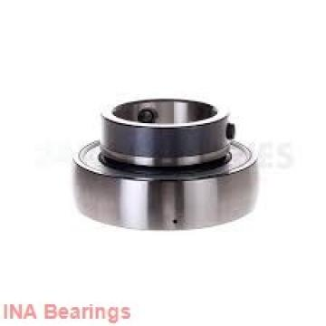 INA SL06 038 E cylindrical roller bearings